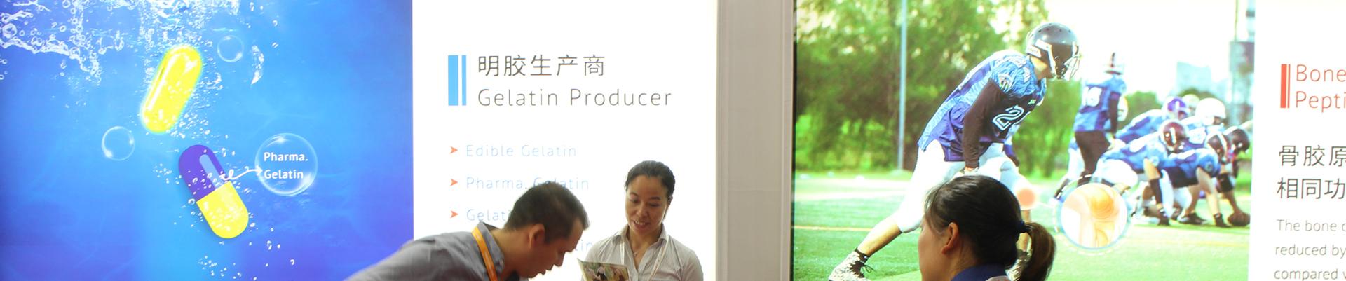 Gelatin & collagen peptide manufacturer